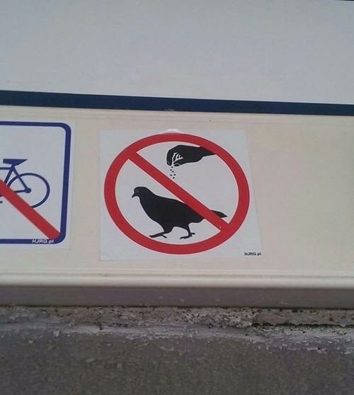 This sign encouraging you not to season the pigeons: