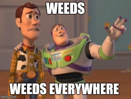 You say your life is in the weeds whenever something slightly inconvenient happens.