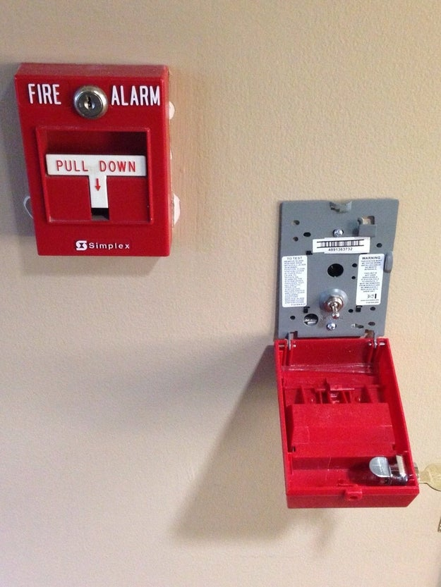 The inside of a fire alarm, which is actually just a little baby switch.