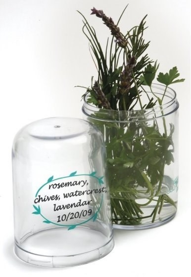 An herb saver so you can keep cut herbs fresh for up to ~three weeks~ — just add water.