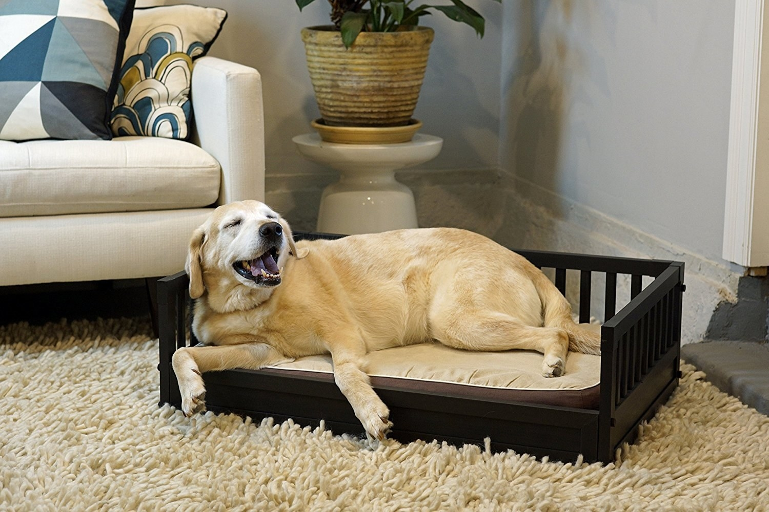 An EcoFLEX Bed With A Removable, Washable Cover And An Elegant Frame So The  Doggo In Your Home Can Sleep Like A King.
