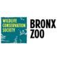 Bronx Zoo profile picture