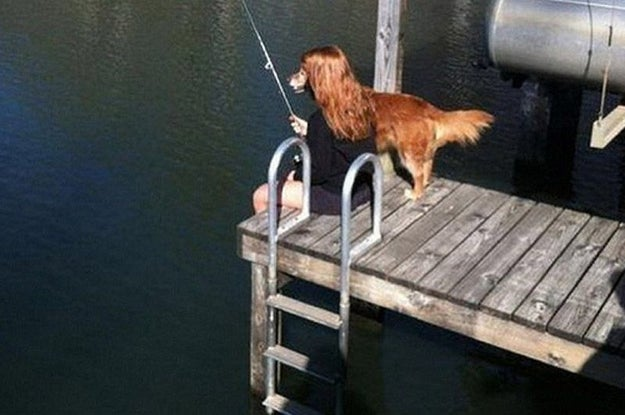 And this dog/human who is trying to reel that fish in.