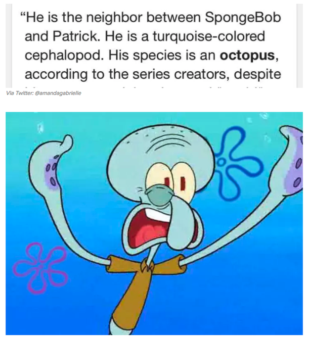 Squidward's REAL identity: