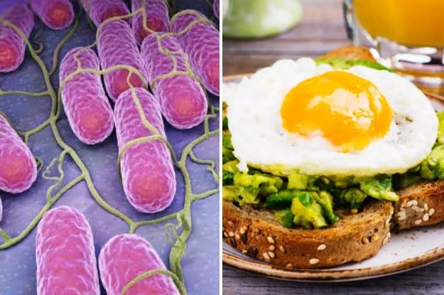 best dating buzz salmonella outbreak eggs