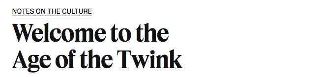 a nytimes article saying welcome to the age of the twink