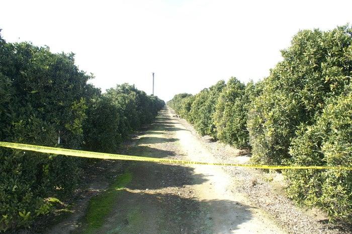 A crime scene in Tulare County, California, where one of Martinez's victims was found, 2011.