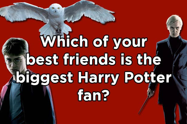 Which Of Your BFFs Is The Biggest Harry Potter Fan?