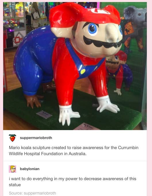 Heres Everything You Need To Know About This Mario Koala That Keeps