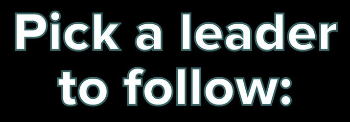 Pick a leader to follow: