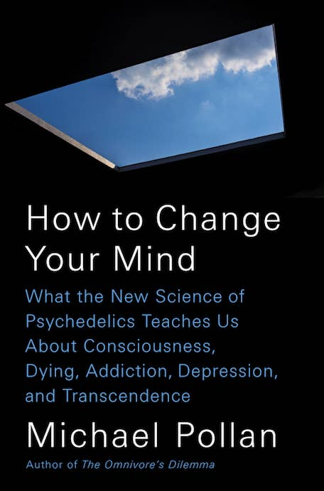 Psychedelics Teaches Us About Consciousness Dying Addiction Depression And Transcendence Because A Good Book Is Practical Whether Or Not Your Dad