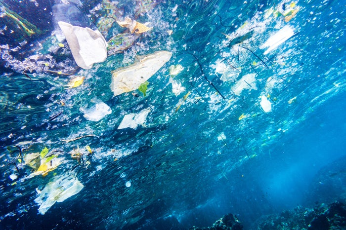 So where does all this trash come from? Well, over 80% of pollutants come from land-based activities; that includes natural processes and human activities along the coastlines and far inland, which all affect the condition of our ocean.