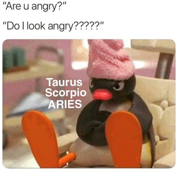 24 Taurus Memes That Will Make You Feel Seen