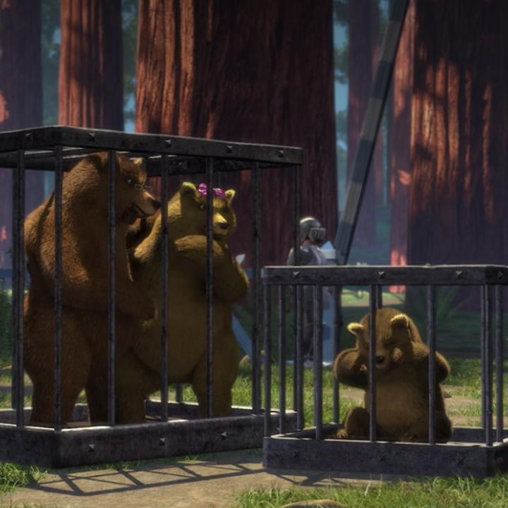 Mama Bear Gets Turned Into A Rug
