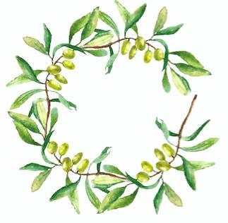 凱蒂佩芮突然「送橄欖枝+字條」給泰勒絲 粉絲一查花語嚇壞!