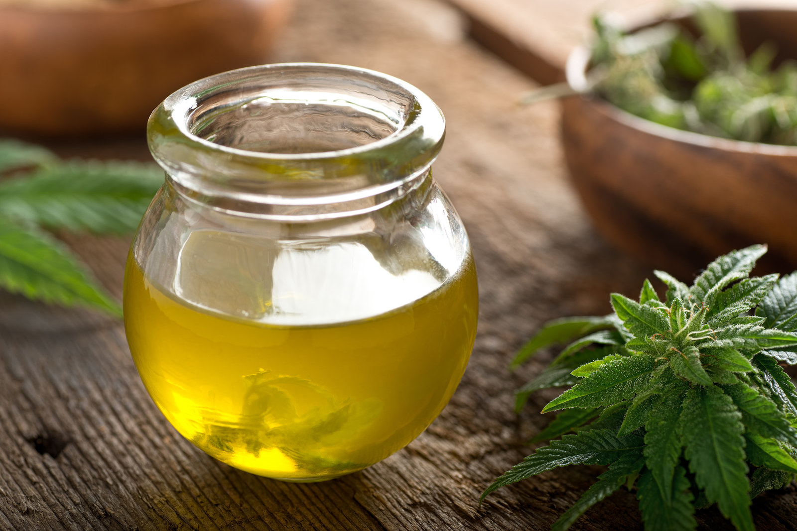 What Is CBD Oil And Why Are People So Into It? A Guide