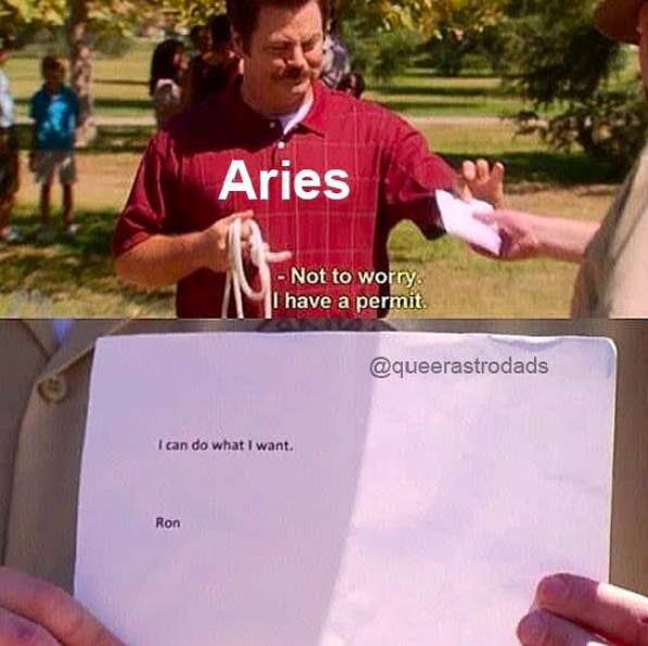 25 Aries Memes That Aren T Just About Them Yelling Their Heads Off