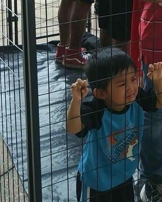 Image result for immigrant children in cages