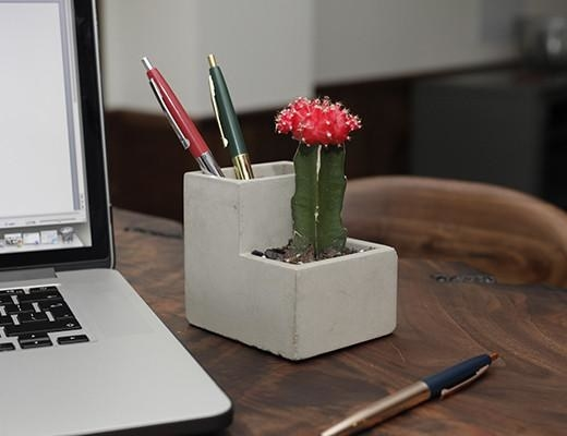 a concrete planter that looks like stairs with a cactus on one step and pens in the other