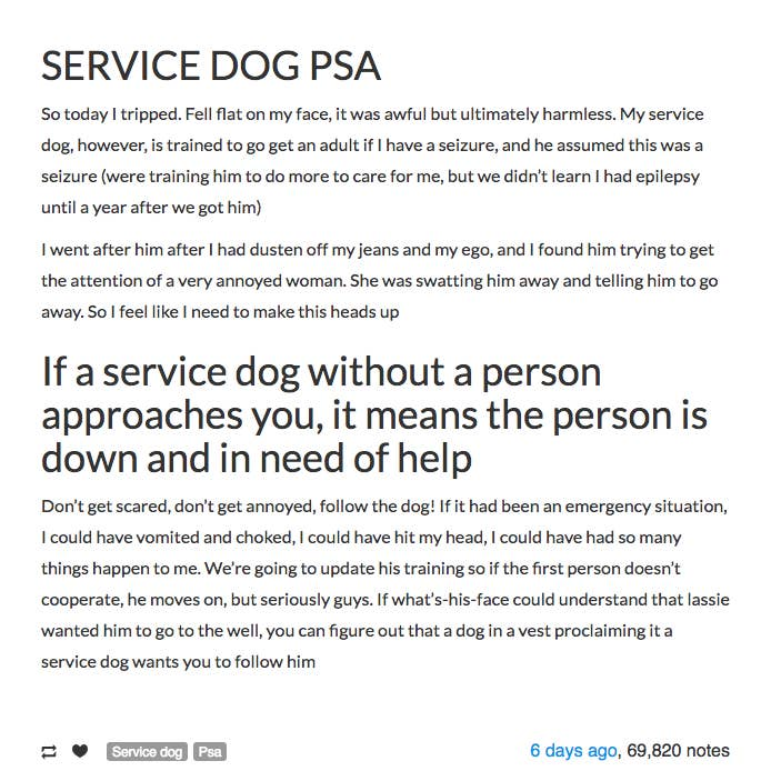 """Connaughton wrote about it in a Tumblr post as a PSA for others that a lone service dog trying to get your attention could mean the owner is in trouble.""""At the time I was so embarrassed that I'd fallen so bad in the first place that I kind of just took him and moved on,"""" she said.""""Afterwards I kind of thought about it, and what if I had had actually been having a seizure?""""That's what led her to write the post, which now has more than 69,000 notes on Tumblr.""""Don't get scared, don't get annoyed, follow the dog! If it had been an emergency situation, I could have vomited and choked, I could have hit my head, I could have had so many things happen to me,"""" she wrote.Service dogs for people with epilepsy can be trained to do a variety of different things if someone is having a seizure. Some are trained to bark or alert family members that a seizure is happening, they may lie down next to the person to help prevent injury, or they can be trained to activate a pre-programmed device that issues an alarm. If you're not sure what to do if you see someone having a seizure, here are 17 Things Everyone Should Know About Epilepsy."""