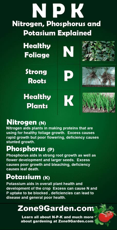 "This'll sound familiar, because fertilizers also generally give an ""NPK"" number — nitrogen, phosphorous, and potassium — the same info you're looking at in a soil test. But this is all about getting even more of those important nutrients to your platns. Unfortunately there's not an easy ""tip"" for this one; you just have to do your research and pay attention to the information about your seeds or plants when you buy 'em. There are several types of fertilizers out there; read more about it on Fine Gardening, Bonnie Plants, and Zone 9 Garden."