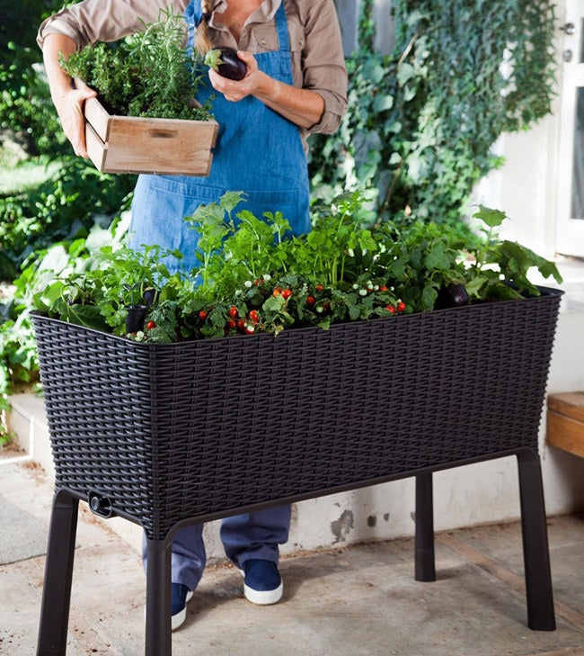 The garden features a water gauge that indicates when your plants need additional moisture and a drainage system that can be opened or closed for full control of watering.See apromisingreviewhere.Price: $106.99 (available in black and brown)