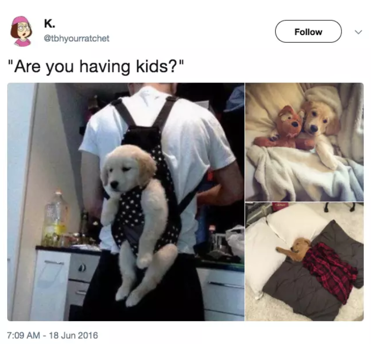 If You Absolutely, 100% Never Want Kids, These 19 Posts Are For You