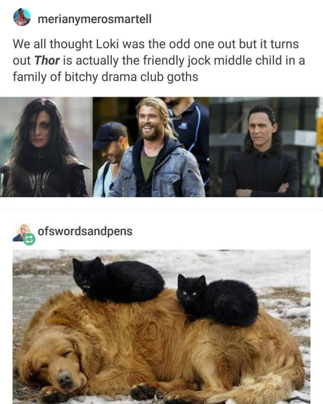 Tumblr Calculated How Old Thor And Loki Are In Human Terms, And It