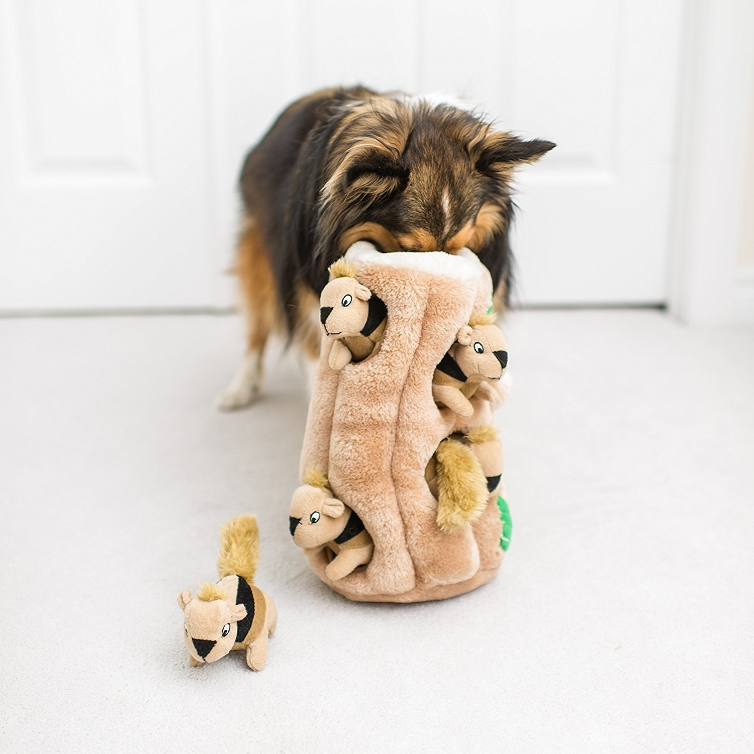 Dog digging head into plush tree trunk with several holes holding squirrel toys