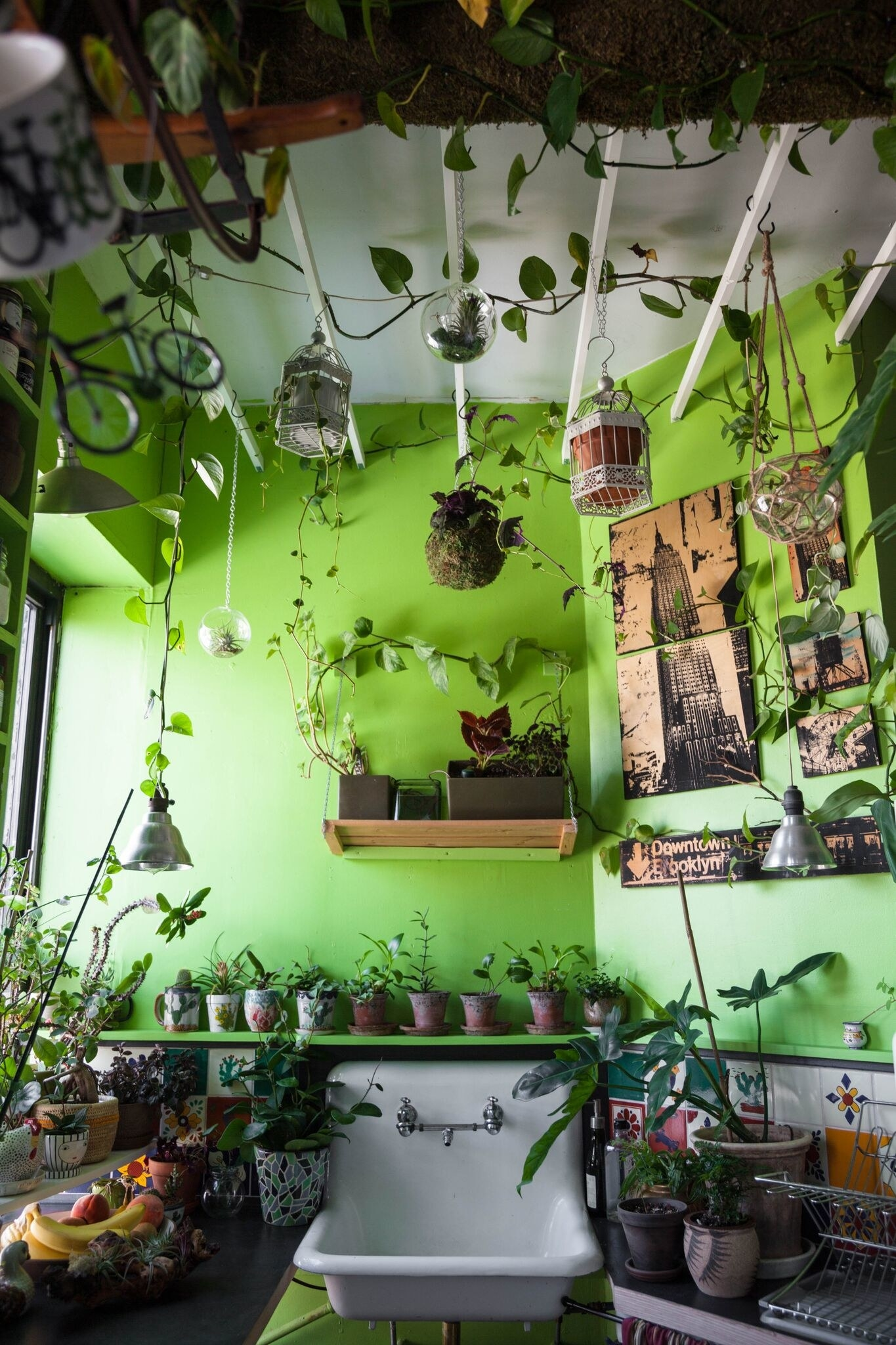We Asked An Expert About The Benefits Of Keeping Houseplants