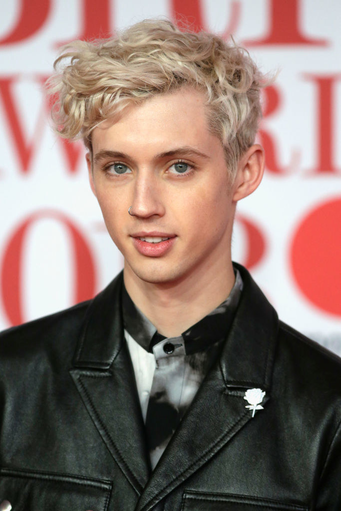 "Troye Sivan - Who he is:  Twink pop star My mom's guess:  ""Looks like he has swimmer's hair. Is he on your swim team? He would have to remove that piercing before a race though."" Was she right?"