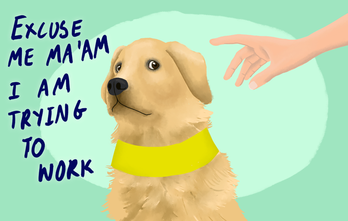 While dogs can be quite the fashionistas they have absolutely no need for a bag. Though guide dogs are incredible, if you want to give something to their owner, we'd suggest you do just that.