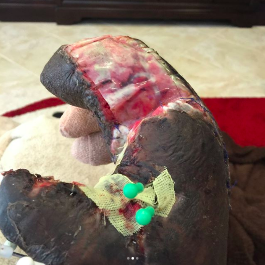 NFL Star Jason Pierre-Paul Shared INCREDIBLY Graphic