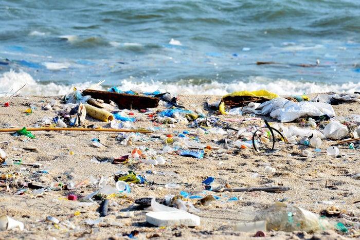 Millones de animales mueren anualmente por ingerir, intoxicarse, asfixiarse o quedar atrapados en algún objeto de este material.
