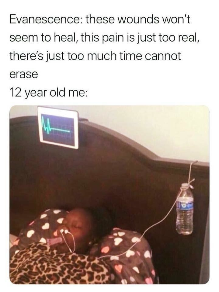 picture reading evanescence this pain is too real, there's just too much time cannot erase and a caption reading 12 year old me with a sad girl