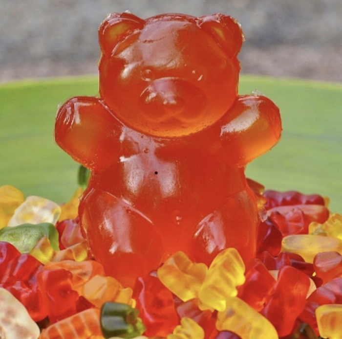 Gummy snacks and cars are coated with carnauba wax to make them shiny.
