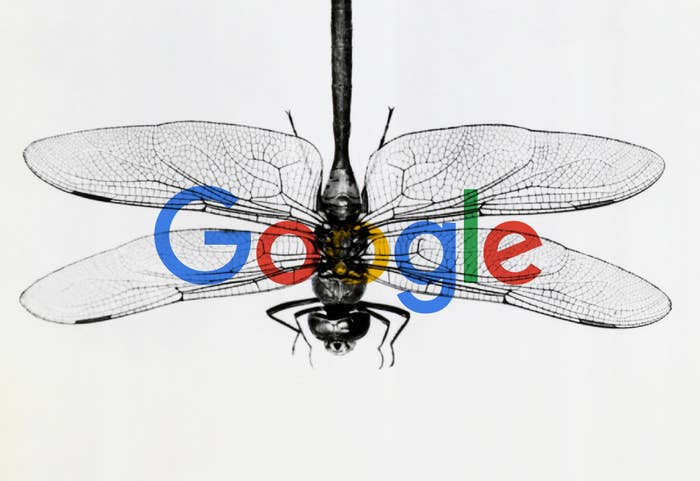 Image result for chinese dragonfly google