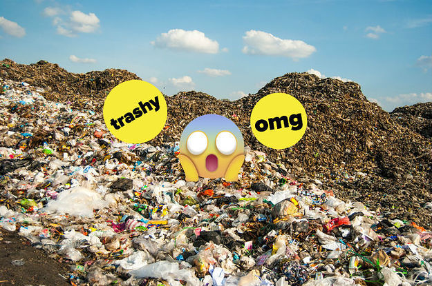 Please Let Me Tell You All The Weird Stuff I Learned About Landfills