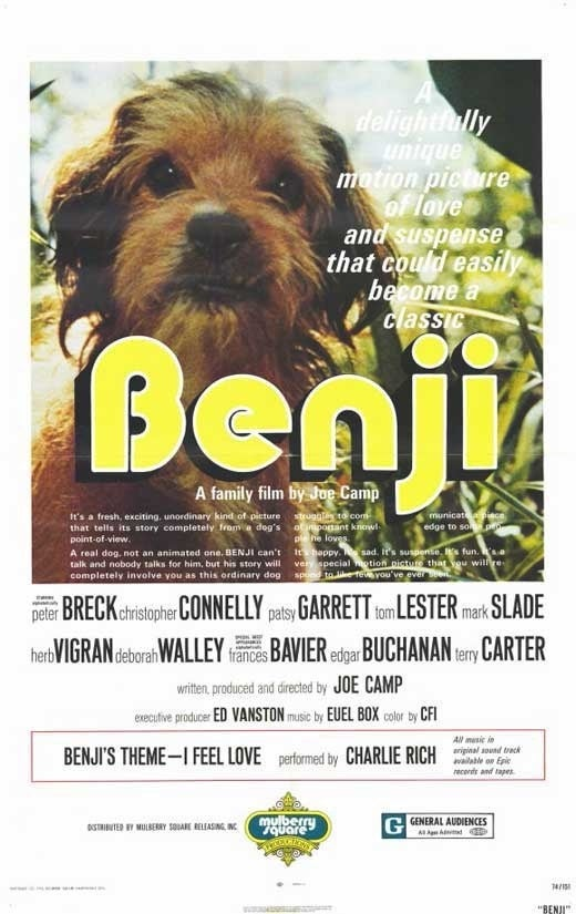 Benji saved two kidnapped children. My dog will purposefully look away from my direction when I call her name.