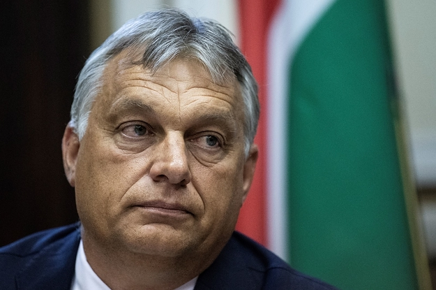 Hungary's Been Criticized For Backsliding On Human Rights. The US Ambassador Says He Hasn't Seen It.