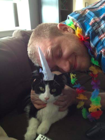 reviewer snuggles with bewildered cat wearing white unicorn horn