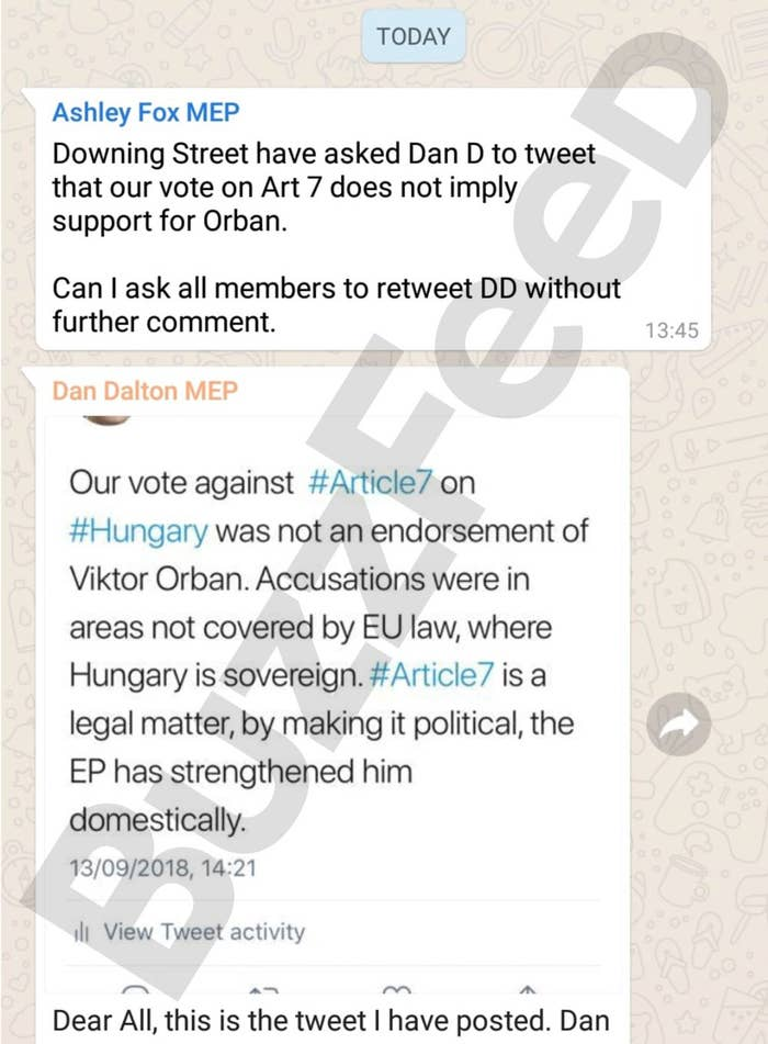 Messages in the Conservative MEPs' WhatsApp group show Number 10 ordered them to distance themselves from Viktor Orban