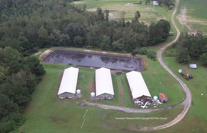 A breached hog waste lagoon in North Carolina.