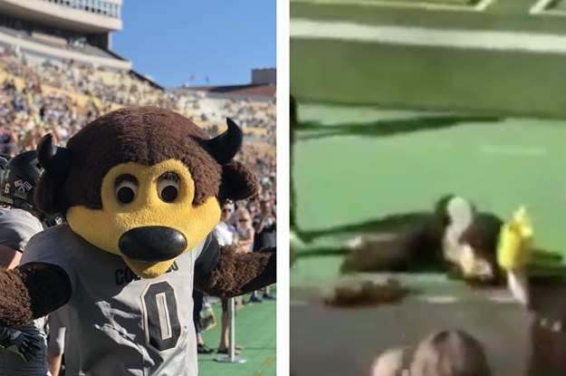 This Mascot Was Taken Off Field After Taking A T-Shirt Cannon Directly To The Groin