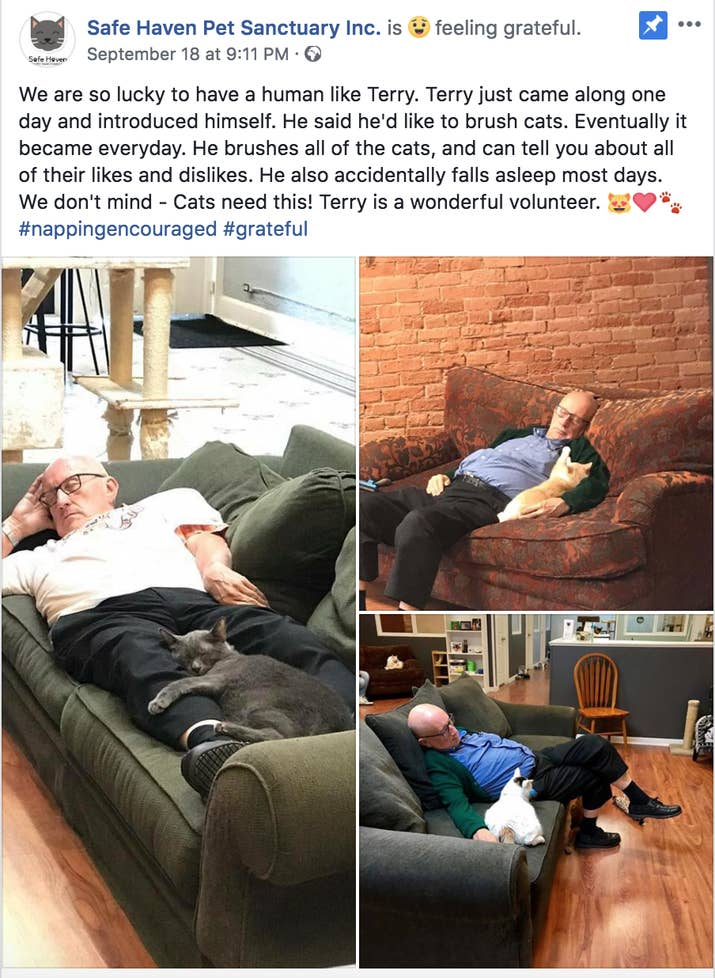 The post has since gone viral. It's currently been shared almost 10,000 times and made it to the front page of Reddit. Elizabeth Feldhausen, the founder of Safe Haven Pet Sanctuary, told BuzzFeed News that all the attention has been really surprising.Feldhausen said that Terry Lauerman started coming by the shelter about six months ago. Over the last few months, he's started coming every day.
