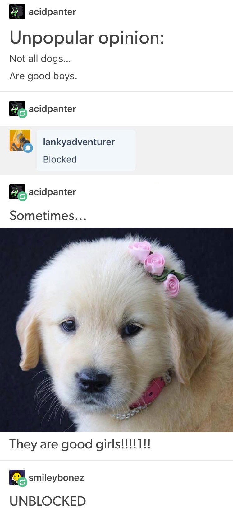 18 Tumblr Posts That'll Make You Want To Hug Your Dog Right Now