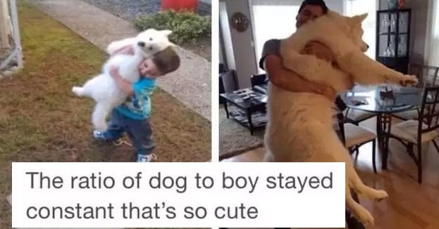 18 Tumblr Posts That'll Make You Want To Hug Your ...