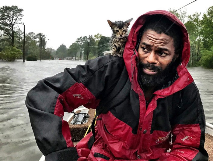 """Robert Simmons Jr. and his kitten """"Survivor"""" are rescued from floodwaters after Hurricane Florence dumped several inches of rain in the area on Sept. 14."""