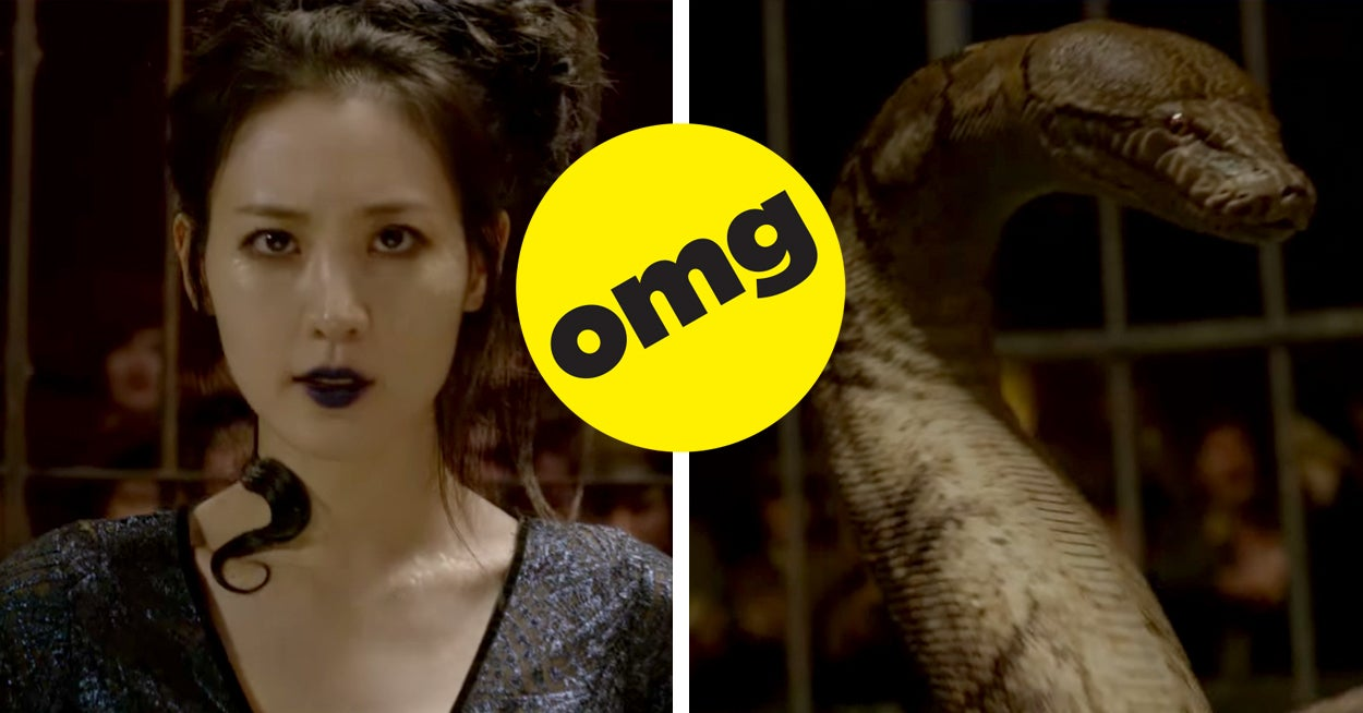 """The New """"Fantastic Beasts"""" Trailer Has A Lot Of """"Harry Potter"""" References And I Have A Lot Of Questions"""
