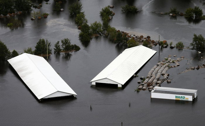 Farm buildings are inundated with floodwaters from Hurricane Florence near Trenton, North Carolina.